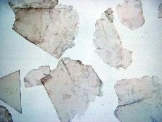 Eslaire Tile #4